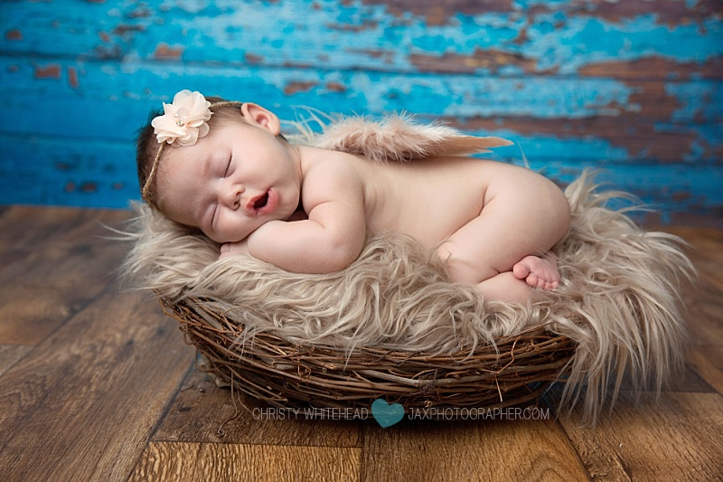 newborn photography jacksonville fl